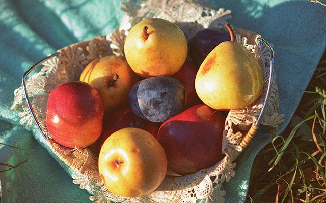 Jabolka, hruške in slive